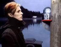 David Bowie The Man Who Fell To Earth music news noise11.com