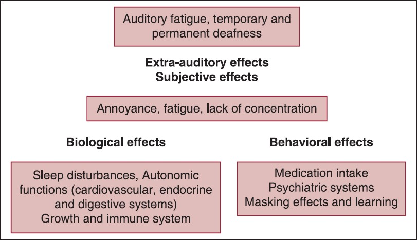 Figure 2: Auditory and extra-auditory effects of noise
