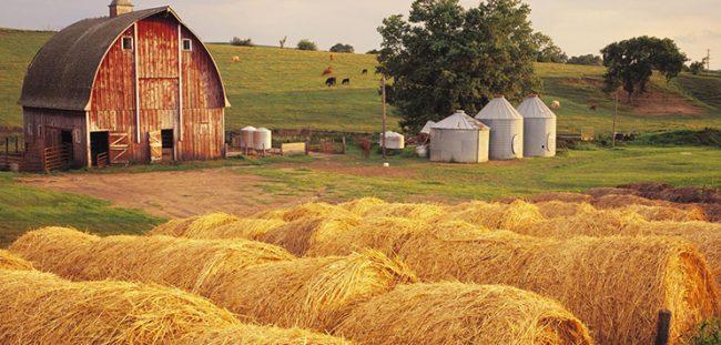 come aprire un'azienda agricola parte 1