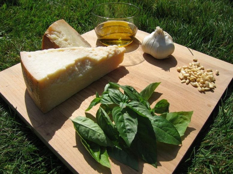 pesto alle genovese ingredienti ricetta originale