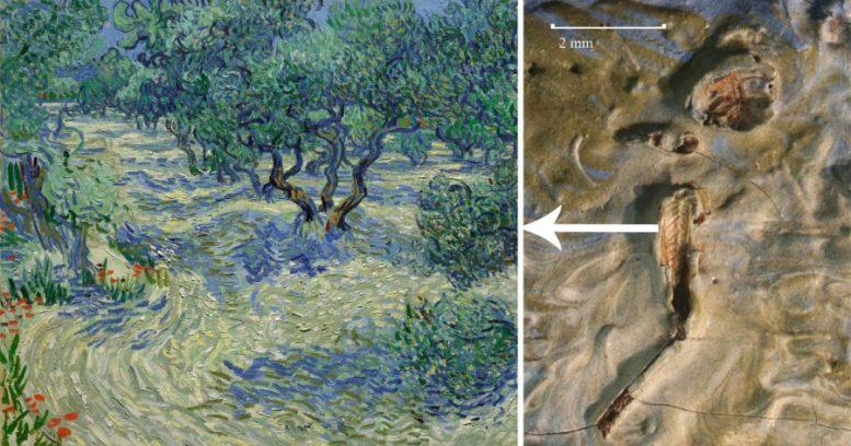 Cavalletta-Van-Gogh