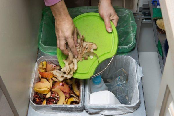 rifiuti organici di Natale