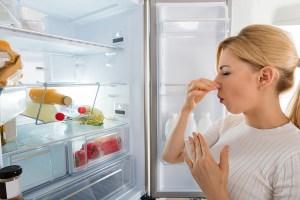 Concimare con la cenere tutti i segreti e le propriet - Cattivi odori in casa ...