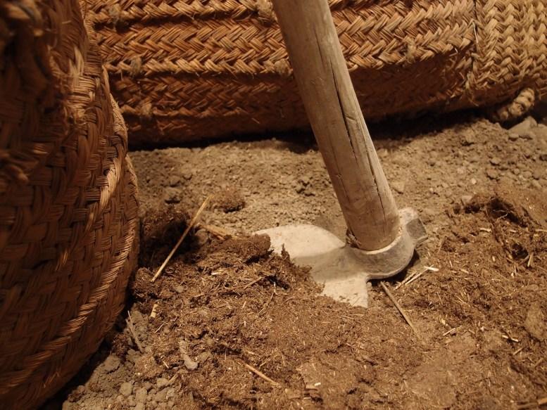 preparare-terreno-orto