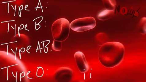 دايت فصائل الدم