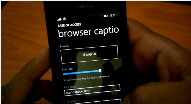 WP8.1 browser