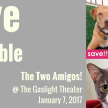 Savethesaveable.com Presents An Evening At The Gaslight Theater
