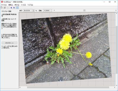 写真加工ソフト「手軽にななめ直し」