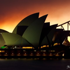 Sydney Opera House (454F10815)