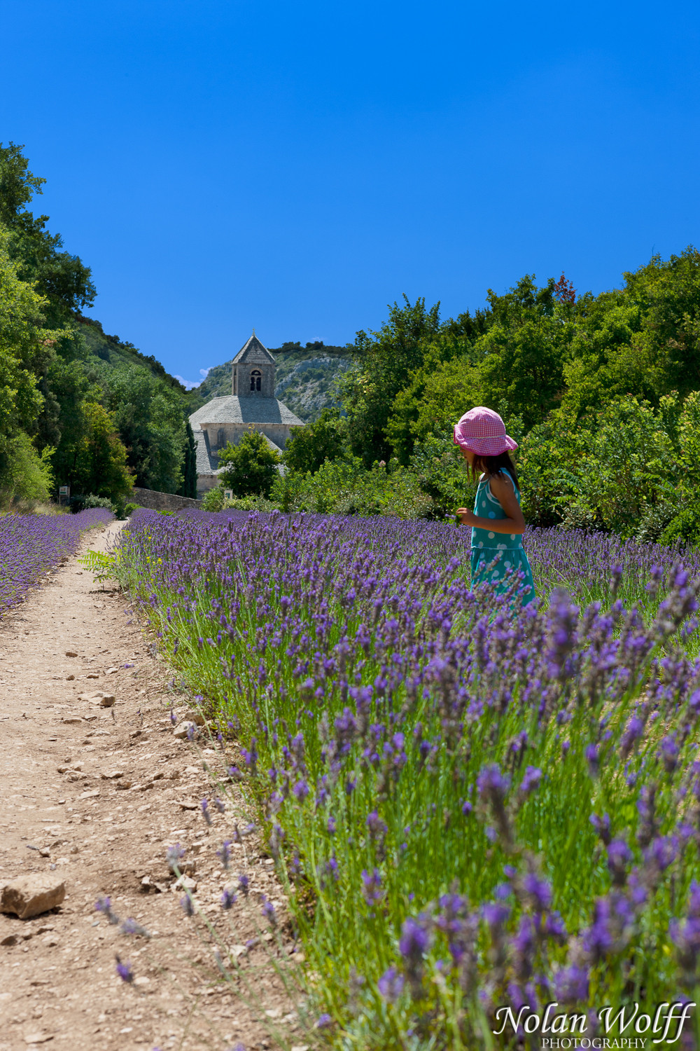Girl in the lavender (454F23104)