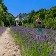 Girl in the lavender (454F23104)