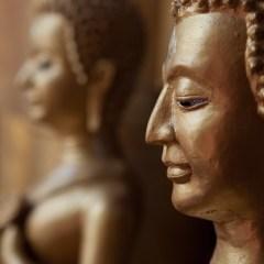 Buddhas (454F23896)