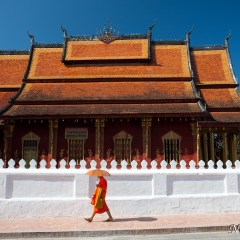 Monk at Wat Saen (454F23917)