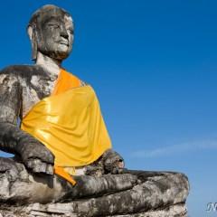 Buddha (454F2779)