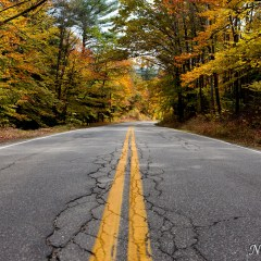 Autumn road (454F9067)