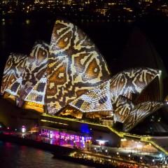 Sydney Opera House - Vivid Sydney 2014 (3J8A01159)