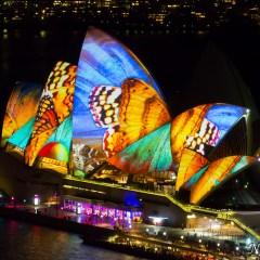 Sydney Opera House - Vivid Sydney 2014 (3J8A01164)