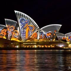 Sydney Opera House - Vivid Sydney 2014 (3J8A01320)