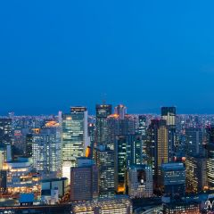Osaka sunset and city lights (454F42247)