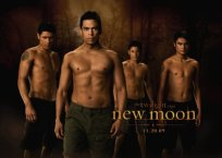 twilight new moon lobos poster