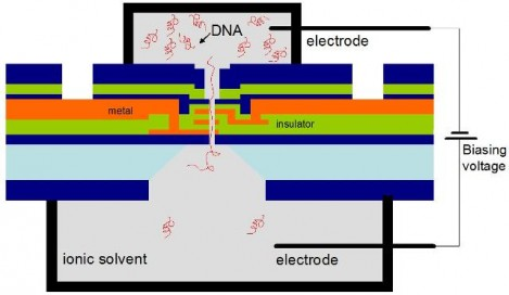 diagrama del transistor de ADN