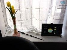 Foto tomada con la cámara trasera del iPad 2