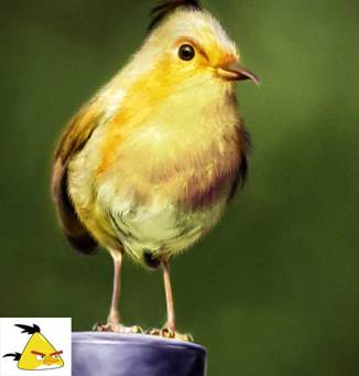 angry-birds-irl-concept-yellow-bird