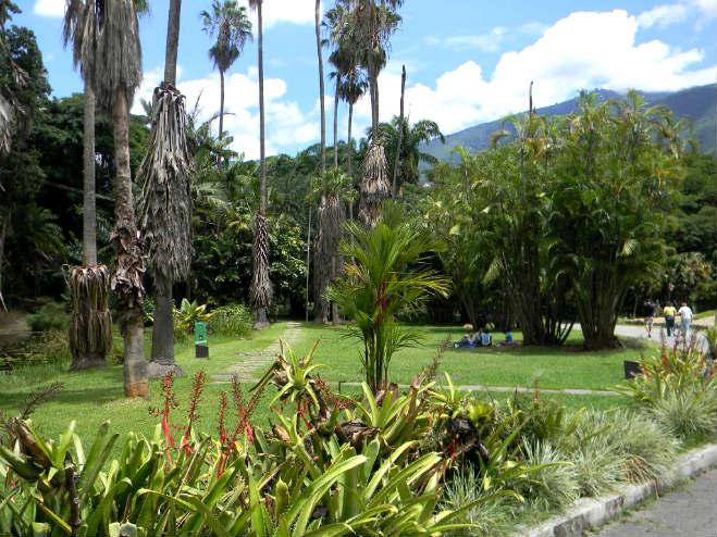 jardin_botanico_caracas_