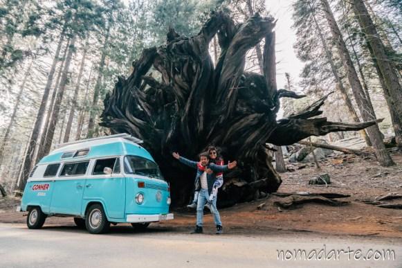 parque nacional sequoia, national park sequoia-108