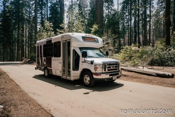parque nacional sequoia, national park sequoia-136
