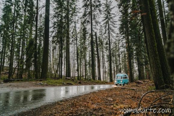 parque nacional sequoia, national park sequoia-223