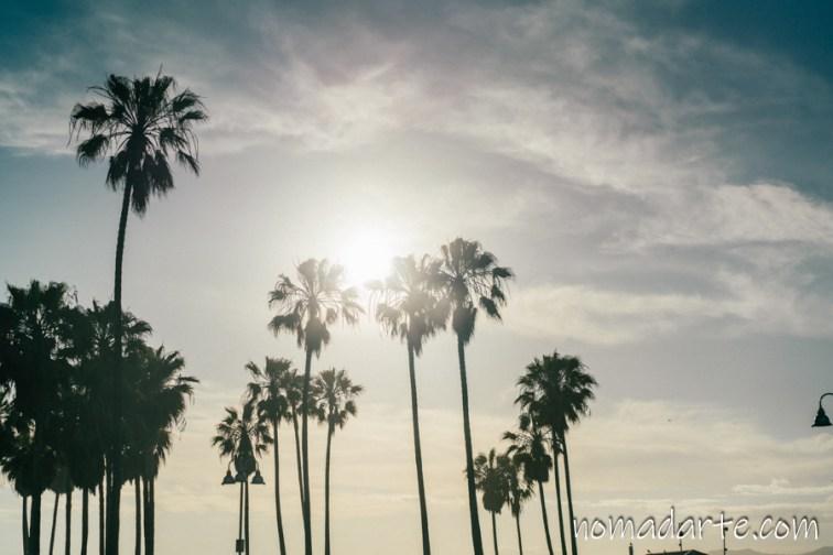 venice beach, california, playa