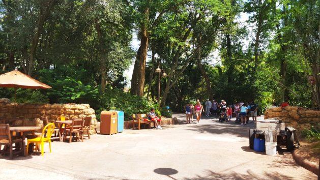 Animal Kingdom with low crowds - Disney World for adults