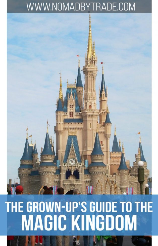 The Grown Up S Guide To The Magic Kingdom For Adults Nomad By Trade