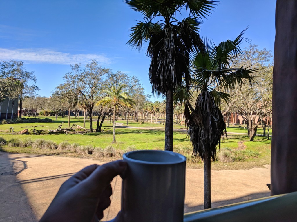 View from our balcony - Animal Kingdom Lodge review