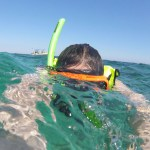 Woman snorkeling in Biscayne National Park