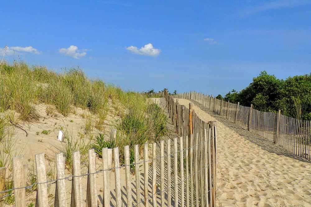 Sandy beach at Cape Henlopen in Delaware