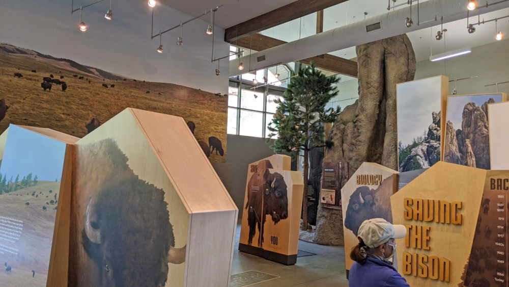 Exhibits about buffalo at the Custer State Park Visitor Center