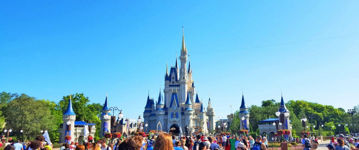The Grown-Up's Guide to the Magic Kingdom for Adults • Nomad by Trade