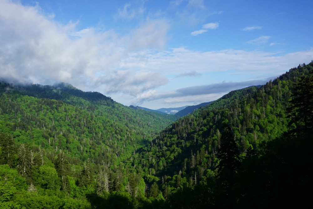 View of rolling mountains from Morton Overlook in Great Smoky Mountains National Park