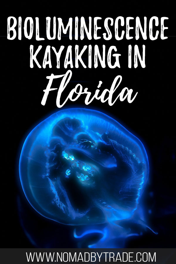 "Bioluminescent comb jelly with text overlay reading ""Bioluminescence kayaking in Florida"""