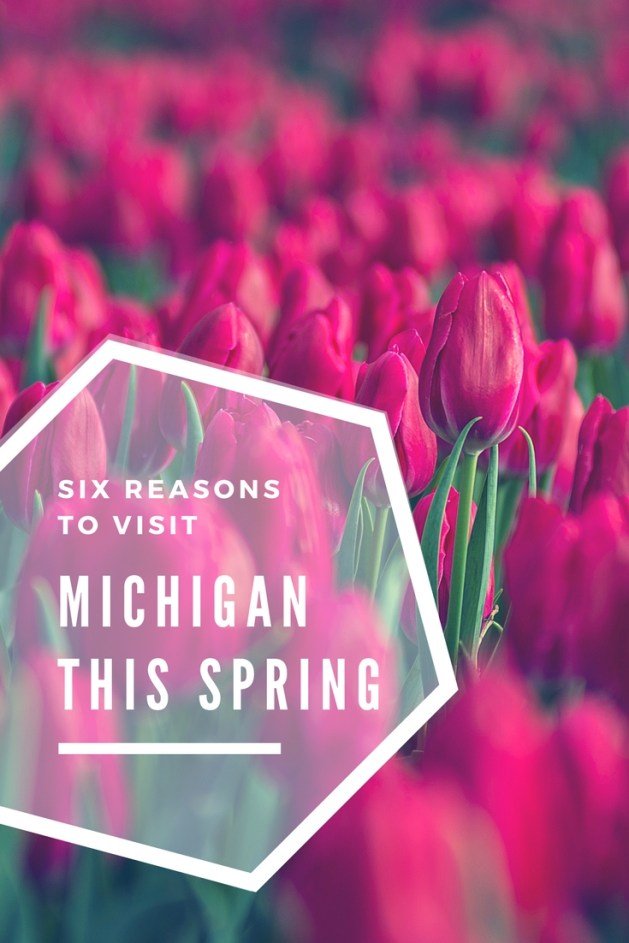 Spring in Michigan is full of fun festivals and events that celebrate the return of warm weather. From parades in Detroit to flower festivals on Mackinac Island and in Holland to Opening Day for the Detroit Tigers, there is something for everyone to enjoy every spring in Michigan. #Detroit | #Michigan | Things to do in Michigan | #MackinacIsland | #Holland | Flower festial | Holland, Michigan |  Marche du Nain Rouge | Lilac Festival
