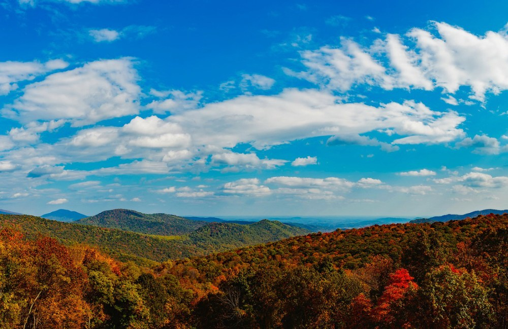 Rolling mountains with fall foliage under a blue sky in Shenandoah National Park
