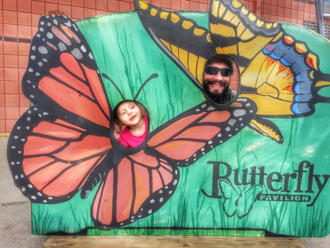 The Butterfly Pavilion: Colorado's Insect Zoo
