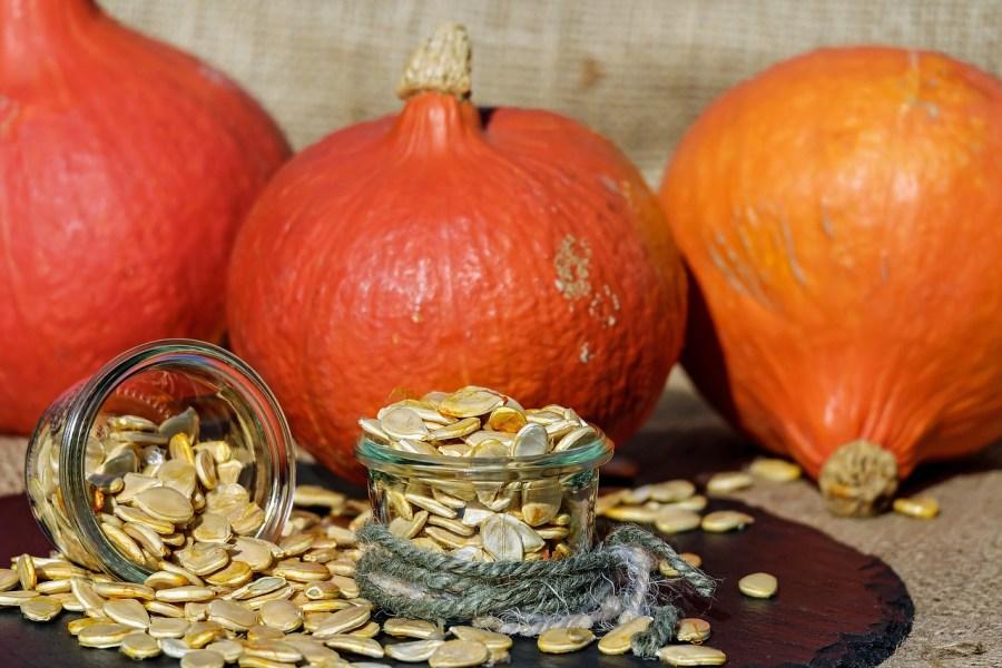 visit graz pumpkin seed oil