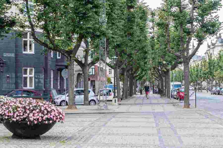 one day in copenhagen itinerary frederiksberg alle