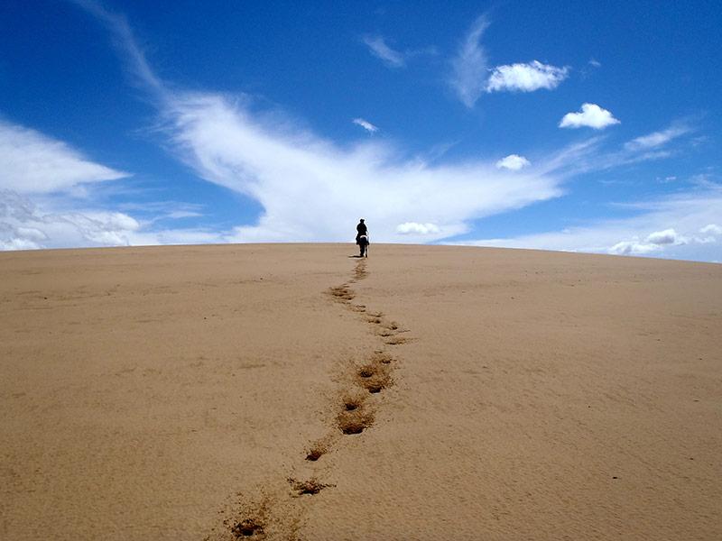 tour to mongolian south gobi desert travel to singing sand dunes