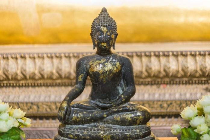 thailand, bangkok, buddha, wat pho