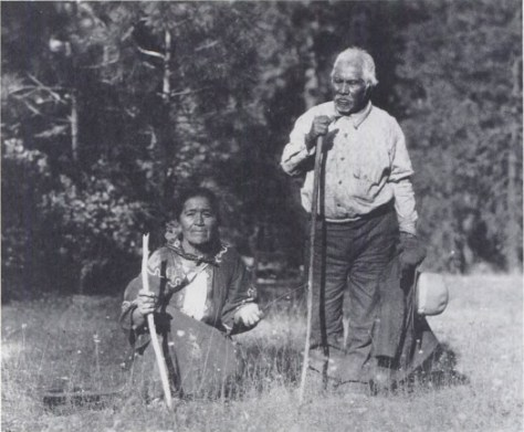 Rosa Charles and Billy George, a Wintu couple, digging for yampah, 1931. Photo from M. Kat Anderson's Tending the Wild, pg 293.