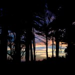 best campground Washington kalaloch